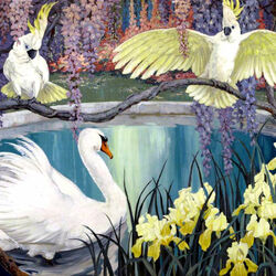 Jigsaw puzzle: Lonely swan