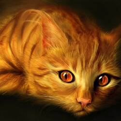 Jigsaw puzzle: Red-headed cat