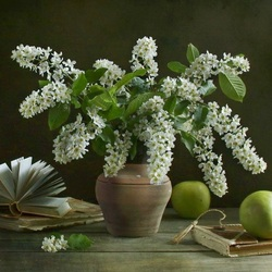 Jigsaw puzzle: Still life with bird cherry and apples