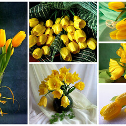 Jigsaw puzzle: Yellow tulips