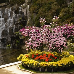 Jigsaw puzzle: Flowerbed by the waterfall