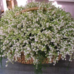 Jigsaw puzzle: Fragrant basket