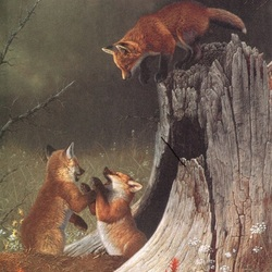 Jigsaw puzzle: Foxes at the hole