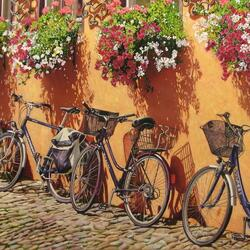 Jigsaw puzzle: Bicycles