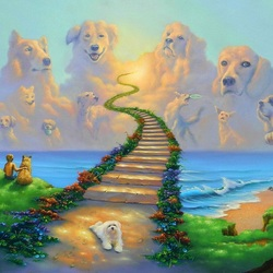 Jigsaw puzzle: Dog heaven
