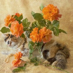 Jigsaw puzzle: Roses and cat