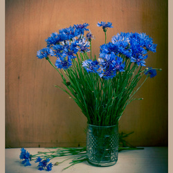 Jigsaw puzzle: A bouquet of cornflowers