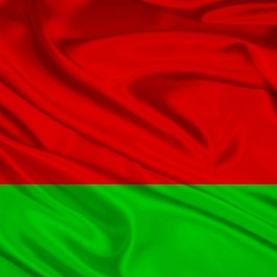 Jigsaw puzzle: Flag of Belarus