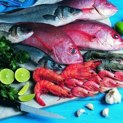 Jigsaw puzzle: Fresh fish and seafood
