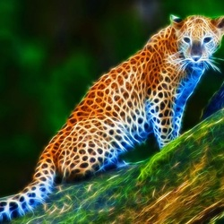 Jigsaw puzzle: Leopard