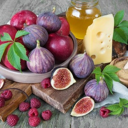 Jigsaw puzzle: Fig