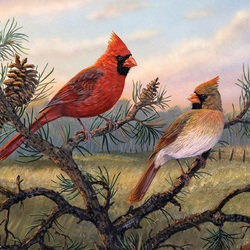 Jigsaw puzzle: Cardinals on a branch