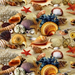 Jigsaw puzzle: Lots of seashells