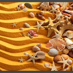 Jigsaw puzzle: Seashells in the sand