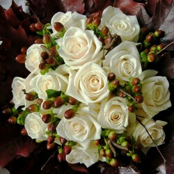 Jigsaw puzzle: White Rose