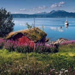Jigsaw puzzle: Lofoten in summer