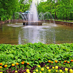 Jigsaw puzzle: Fountain in Peterhof