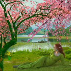 Jigsaw puzzle: Spring beauty