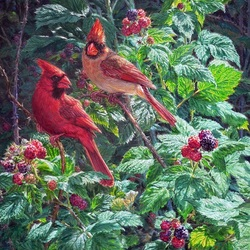 Jigsaw puzzle: Cardinals in raspberries