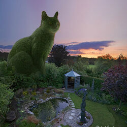 Jigsaw puzzle: Cat Kote at the gazebo