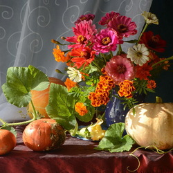 Jigsaw puzzle: Gifts of autumn