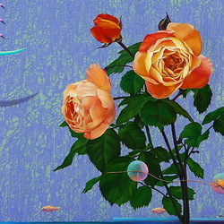 Jigsaw puzzle: Delicate roses