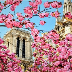 Jigsaw puzzle: Paris in spring