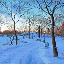 Jigsaw puzzle: Winter in Central Park