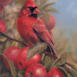 Jigsaw puzzle: Cardinal and apples