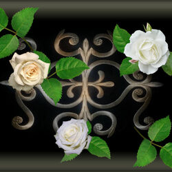 Jigsaw puzzle: Roses