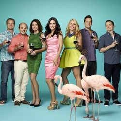 Jigsaw puzzle: Cougar Town