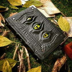 Jigsaw puzzle: Three-eyed swamp book