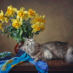 Jigsaw puzzle: Masyanya the cat and a bouquet of daffodils