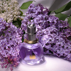 Jigsaw puzzle: Lilac scent