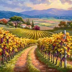 Jigsaw puzzle: Vineyards of Tuscany