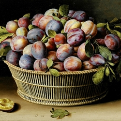 Jigsaw puzzle: Plums in the basket