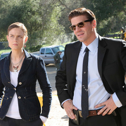 Jigsaw puzzle: Booth and Brennan