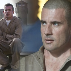 Jigsaw puzzle: Lincoln Burrows