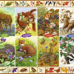 Jigsaw puzzle: Seasons