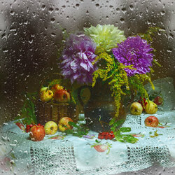 Jigsaw puzzle: Rain outside the window
