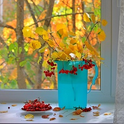 Jigsaw puzzle: Fall has come