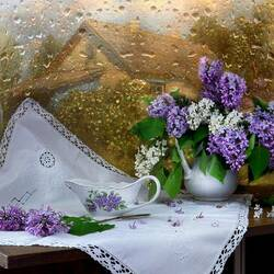 Jigsaw puzzle: Lilac on the window