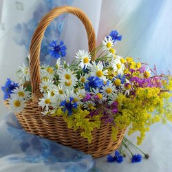 Jigsaw puzzle: Summer in a basket
