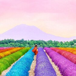 Jigsaw puzzle: Rainbow plantations