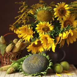Jigsaw puzzle: Yellow harvest