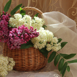 Jigsaw puzzle: Bouquet of lilac and rowan