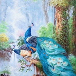 Jigsaw puzzle: Peacocks
