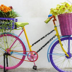 Jigsaw puzzle: Flower bike
