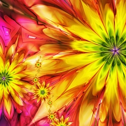 Jigsaw puzzle: Bright flowers