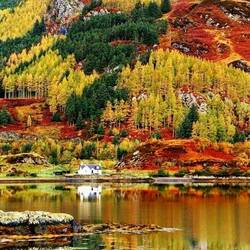 Jigsaw puzzle: Autumn in Scotland